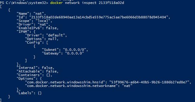 PowerShell module Docker network inspect