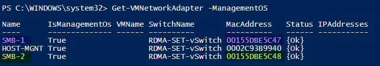 get MAC address of RDMA vNICs command