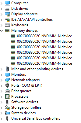 These are the physical devices in your server memory slots.