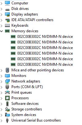 這些是服務器內存插槽中的物理設備。