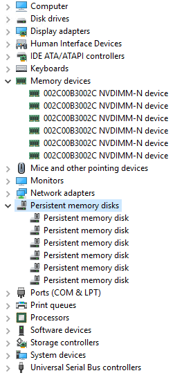 "In ""Device Manager"" we see the Persistent memory disks"
