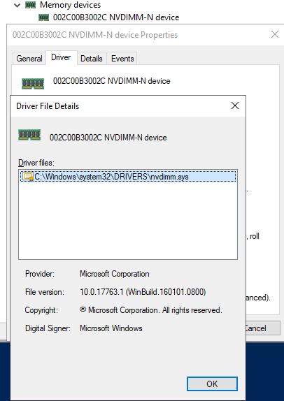 NVDIMM-N device is managed by the nvdimm.sys driver