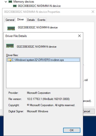 NVDIMM-N設備由nvdimm.sys驅動程序管理