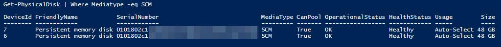 Mediatype SCM (Storage Class Memory)