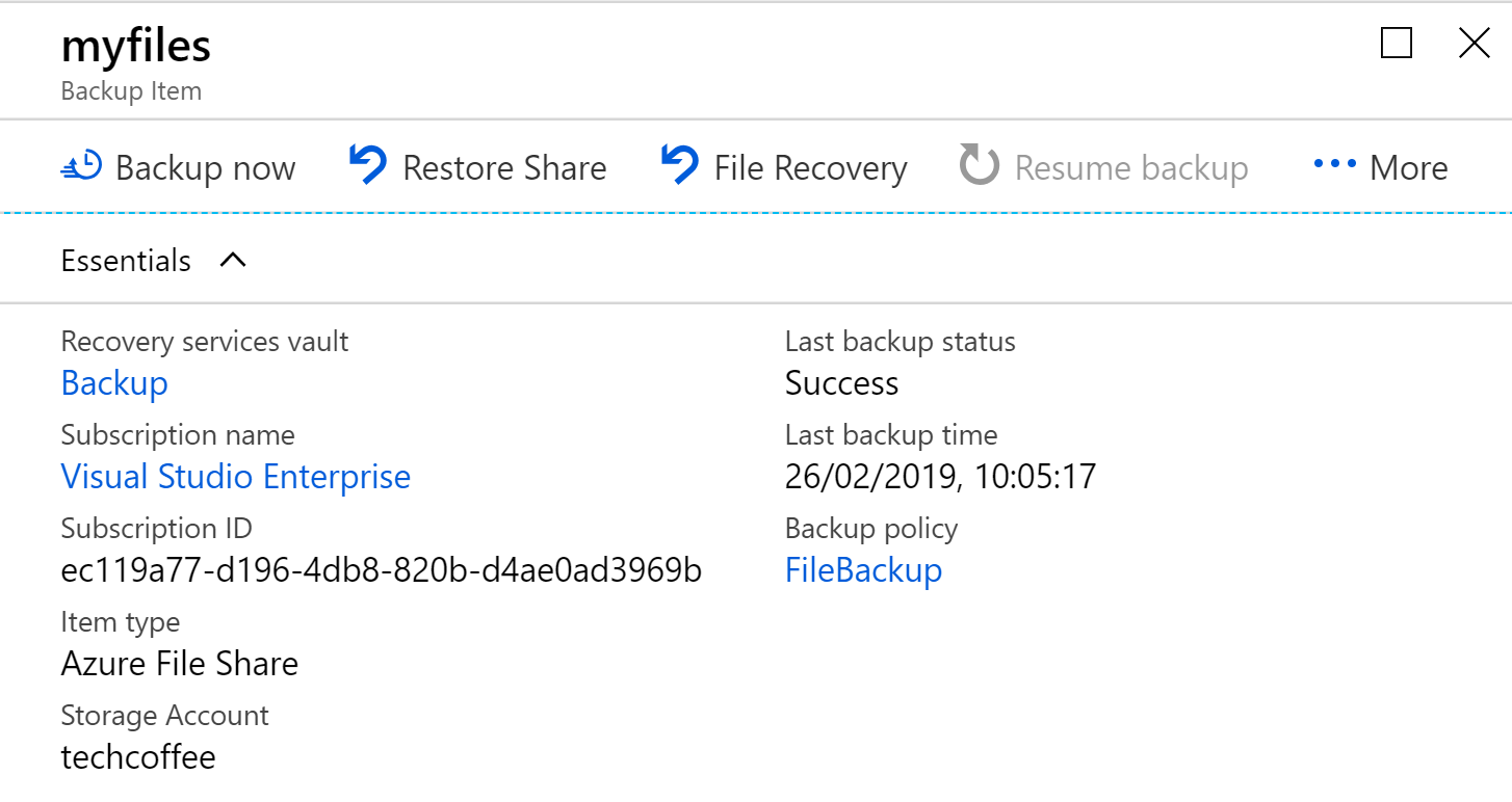 File Recovery: this option enables to restore only wanted files
