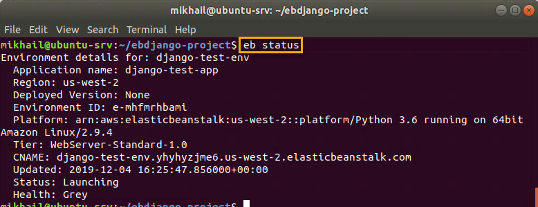 Checking environment status with eb status command