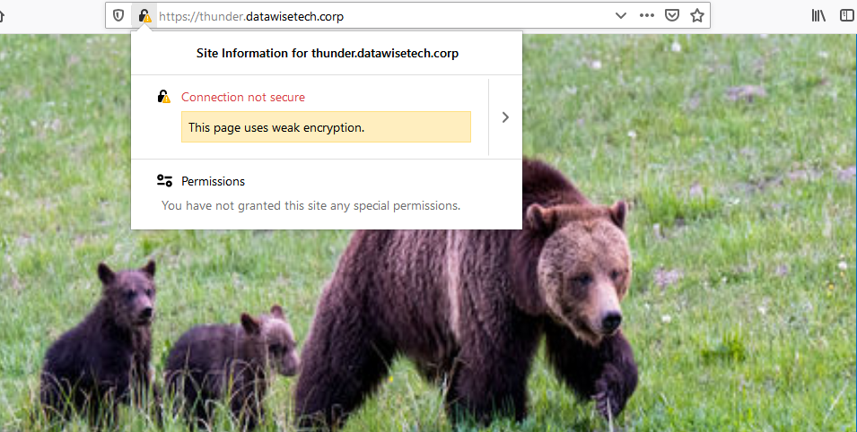 TLS1.1 Firefox