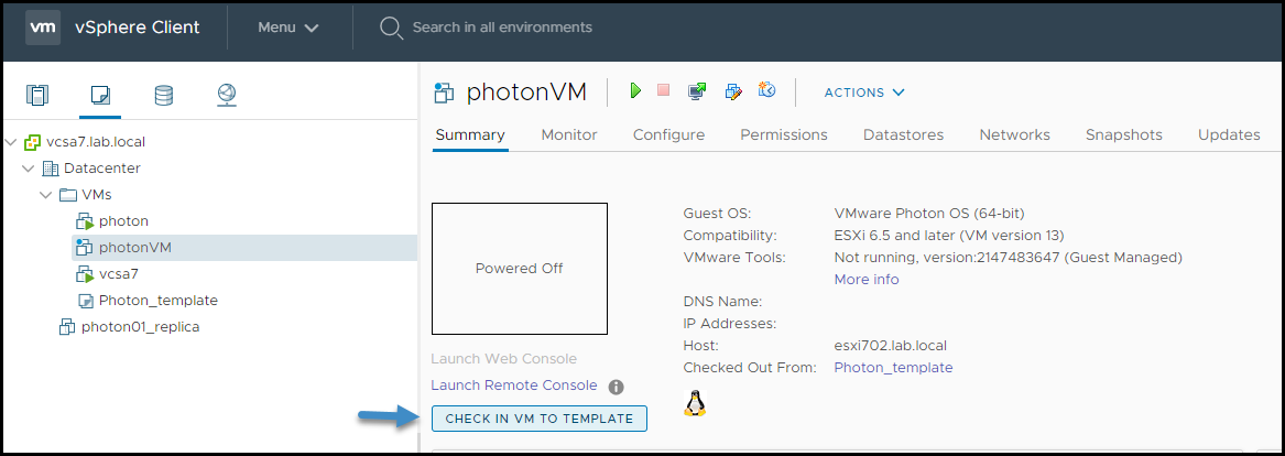 Check-in VM to template