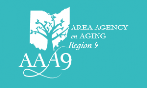 Area Agency on Aging Region 9, achieved high data availability and VM live migration with StarWind Virtual SAN